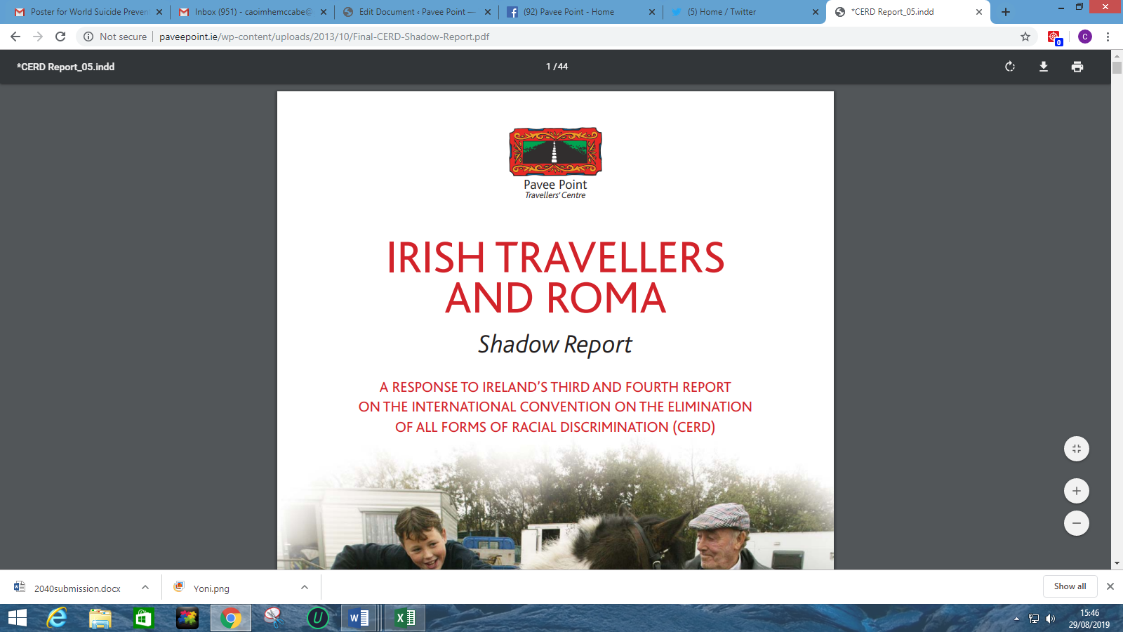Irish Travellers and Roma: Convention on the Elimination of All Forms of Racial Discrimination Shadow Report
